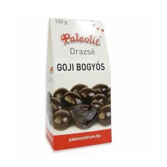 Paleolit Schoko-Goji Dragee 100 g